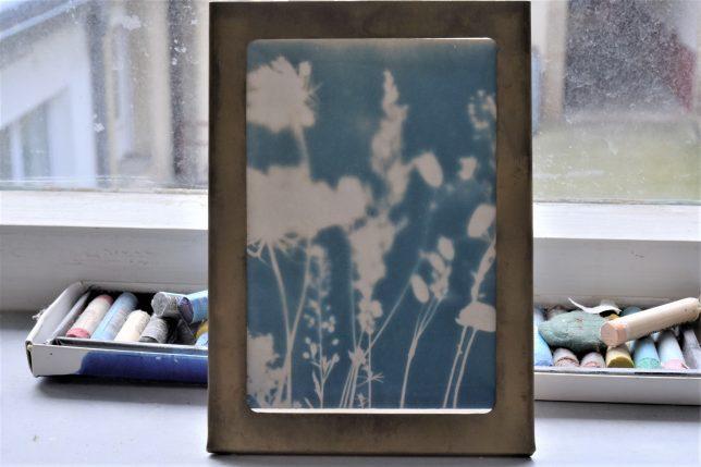 Cyanotypie von Anne Ehrhardt